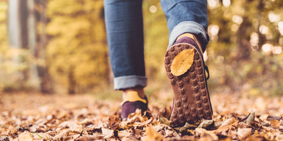 Walking Feet, autumn leaves